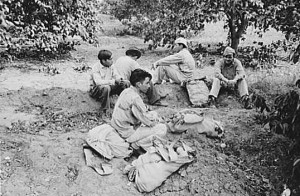 Mexican pickers Weslaco, 1939